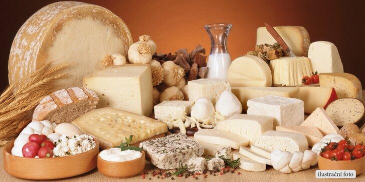 Kurz domácí výroby sýrů, jogurtů a mléčných produktů + sýr s sebou