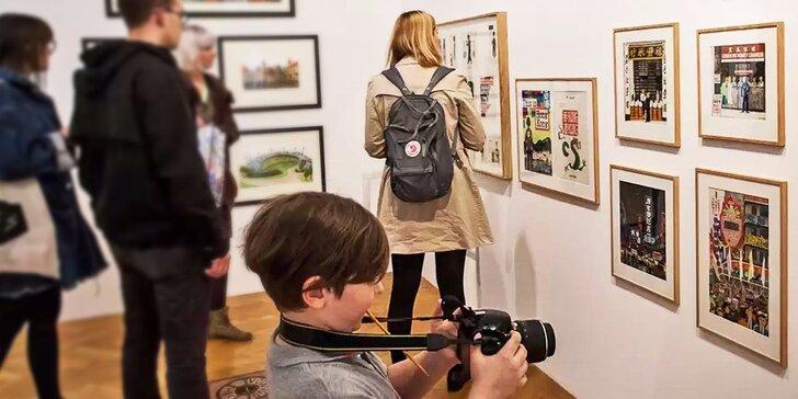 Jednorázový vstup nebo celoroční permanentka do Galerie Villa Pellé