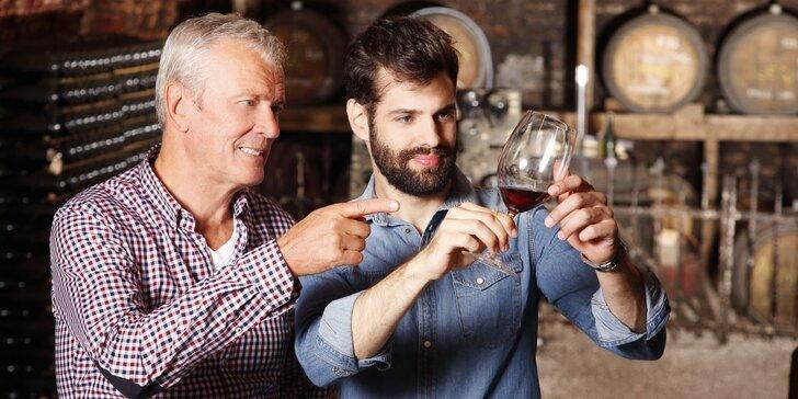 Za tajemstvím vína: Sommeliérský kurz pro začátečníky vč. občerstvení