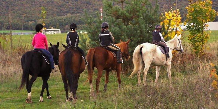 Hodina v sedle: Příprava koně i vyjížďka po okolí nebo v jízdárně