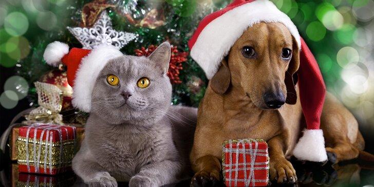 Obdarujte na Vánoce i své mazlíčky: otevřený voucher do zverimexu