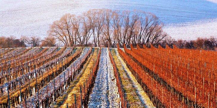 Pozvedněte číše: Víkendový pobyt pro dva spojený s řízenou degustací vína