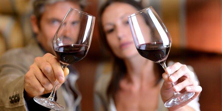 Třídenní pobyt na jižní Moravě: Snídaně i pobyt ve sklípku s degustací vín