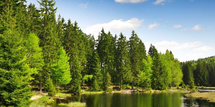 Jaro či léto na Šumavě: pobyt s polopenzí na 3 až 6 dní v útulném penzionu