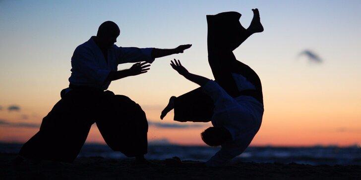 Měsíční kurz Aikidó – naučte se japonskému umění sebeobrany