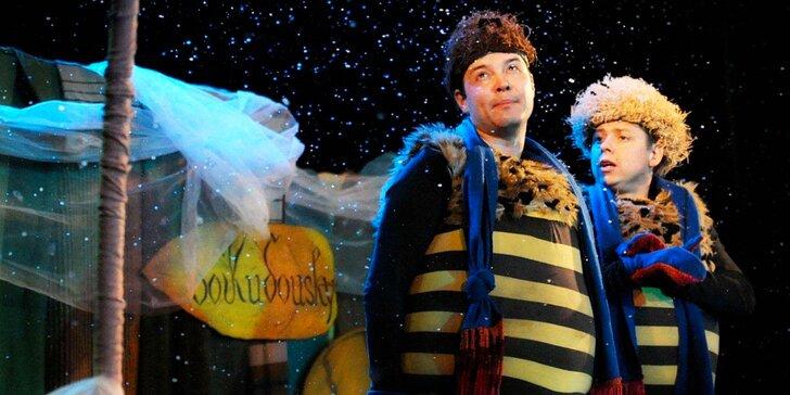 """Vstupenka na představení """"Zimní příhody včelích medvídků"""""""