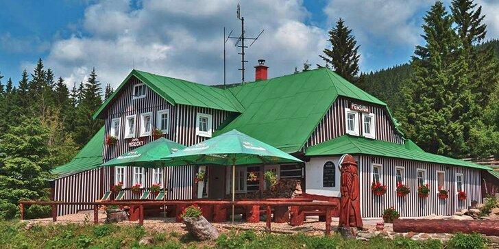 Pohodová dovča v pravé horské chatě uprostřed Krkonošského národního parku