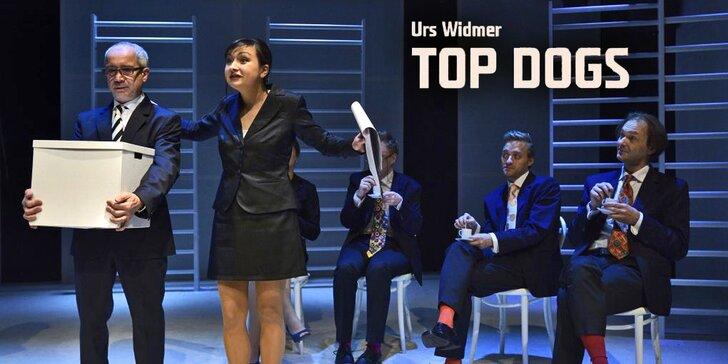 Top Dogs od Urse Widmera: Hra o osudech lidí z top managementu (7 .3. 2017)