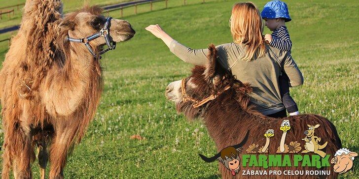 Rodinná vstupenka do Farmaparku: krmení zvířátek, hřiště a spousta prima atrakcí