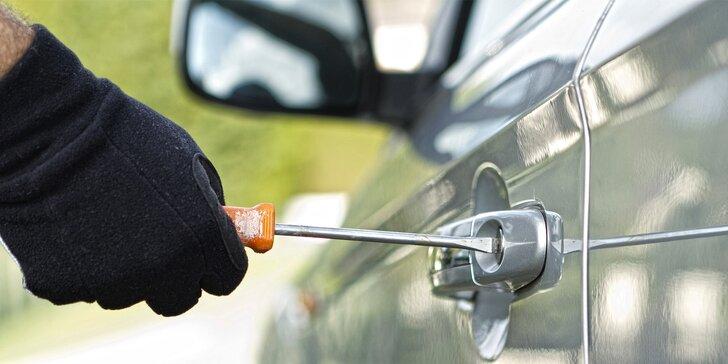 Zabezpečení vozidla před zloději: Pískování autoskel VIN kódem