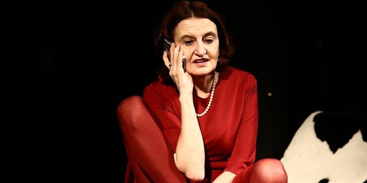 Vstupenka na divadelní komedii Hvězda s Evou Holubovou v KD Peklo