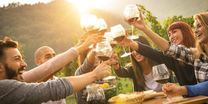 Otevřené sklepy Modrých Hor: festival s degustací vín z 34 věhlasných vinařství