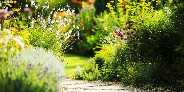 2hodinová konzultace se zahradním designérem: zkrášlete interiér nebo exteriér