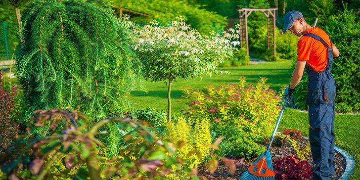 Jarní údržba zahrady: péče o traviny i dřeviny včetně úklidu – 5 či 10 hodin