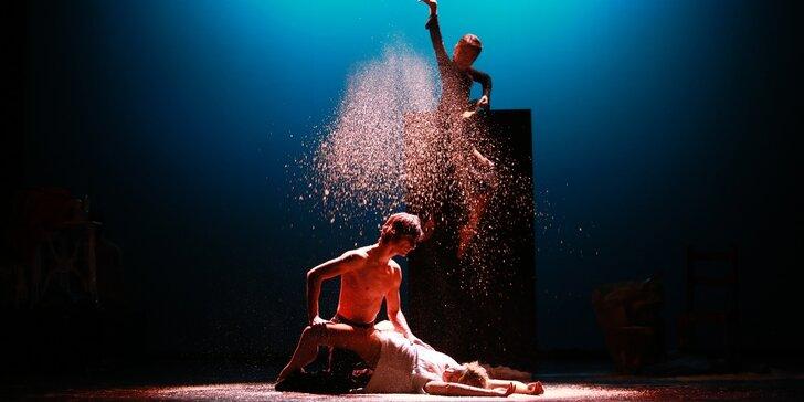 Vstupenka na představení Gazdina roba v Divadle F.X. Šaldy