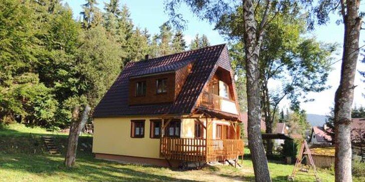 Jarní rodinná dovolená na Lipně ve vybavených apartmánech pro 4 - 5 osob
