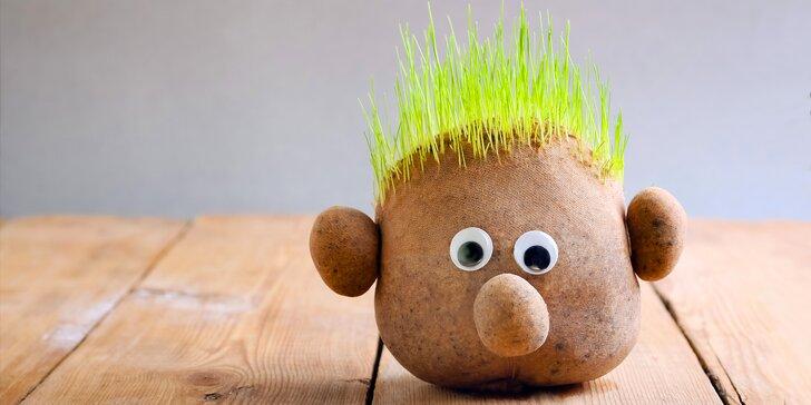 Víkendové tvoření pro malé i velké: pan Trávníček se zelenou kšticí