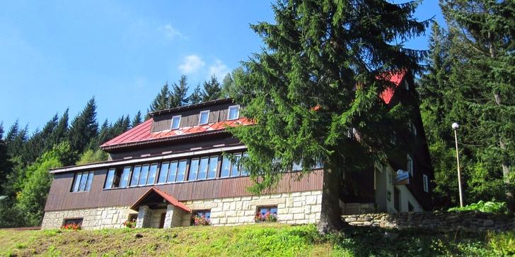 Pohodová dovolená v Krkonoších: bohatá polopenze a vyhřívaný venkovní bazén