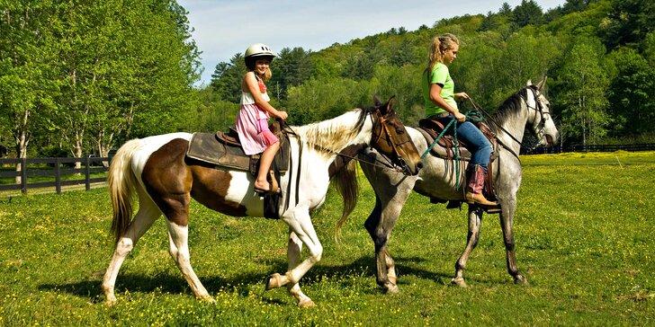 Každý den v sedle: 5denní příměstský tábor u koní pro děti od 5 do 13 let