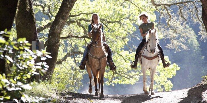 Poznávání přírody kolem Kunětické hory z koňského hřbetu