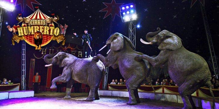 Vstupenky do Cirkusu Humberto na parádní show s akrobaty a exotickými zvířaty