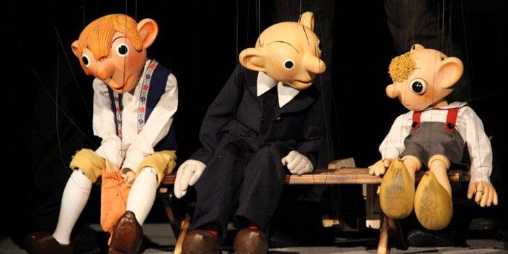 Vstupenka na divadelní představení Dějiny kontra Spejbl