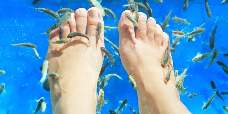 Relaxační lázeň a mikromasáž nohou s rybičkami Garra Rufa