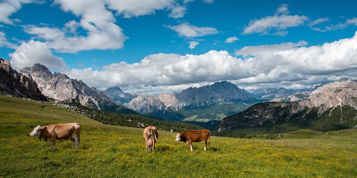 Jaro i léto v rakouských Alpách v apartmánech pro rodinu či partu přátel