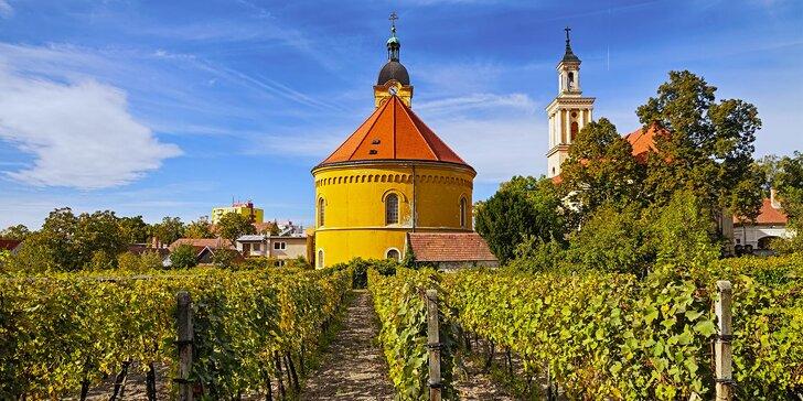 Až 4 dny v Malých Karpatech: pobyt s koštem vína v krajině starobylých vinic