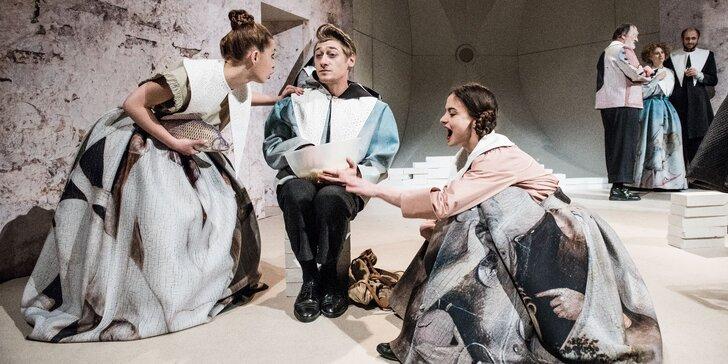 Vstupenka na divadelní představení Krysař ve Švandově divadle