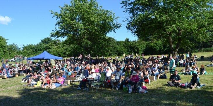 Vstupenka na country a folk festival Muzikantský Heřmánek