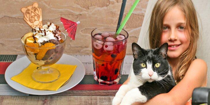 Čas na letní vrnění: Zmrzlinové poháry a domácí limonády v kočičí kavárně