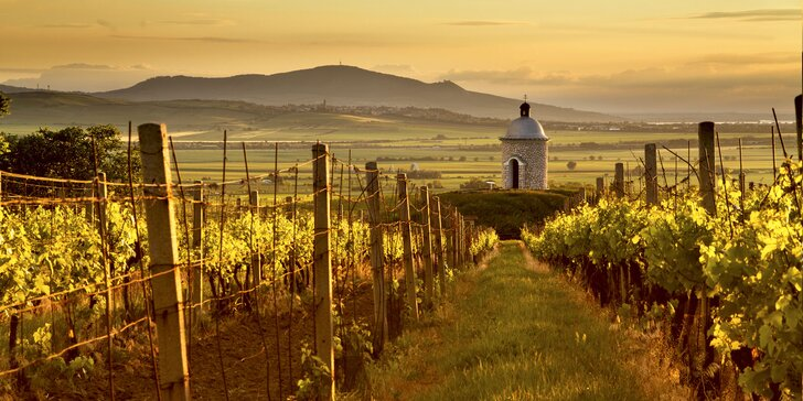 Na jižní Moravu za wellness i vínem: pobyt s polopenzí plný odpočinku