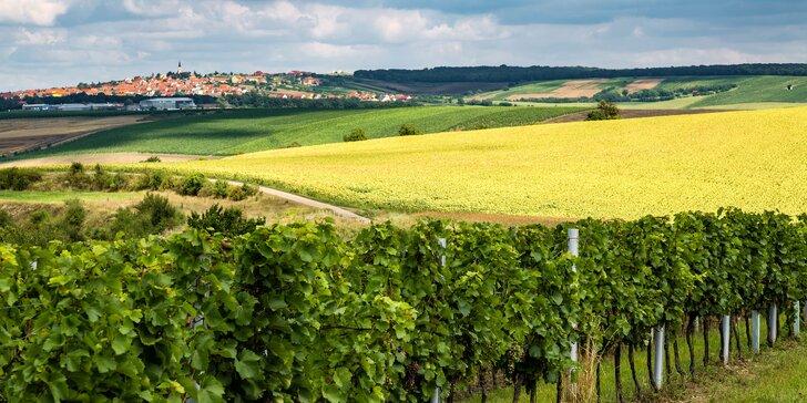 Vinařský pobyt na Kraví hoře: ochutnávka vín i prohlídka vinic a vinného sklepa