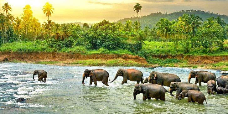 Last minute Srí Lanka vč. letenky a polopenze: poznávací okruh i pobyt na pláži