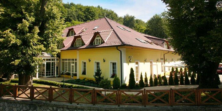 Relaxační pobyt v Trenčianských Teplicích: Neomezený wellness a polopenze pro 2