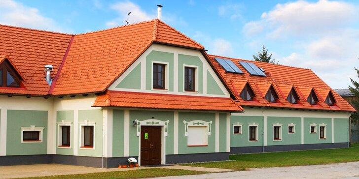 Pobyt ve společnosti koní – 2 až 3 dny v Hanáckém dvoře u Olomouce s polopenzí
