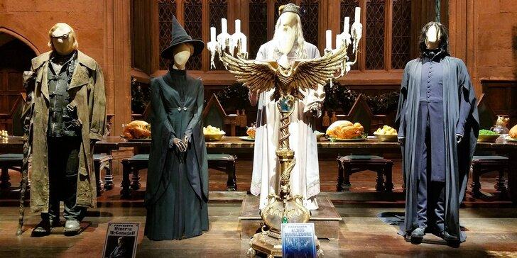 Po památkách Londýna s návštěvou ateliérů Harryho Pottera s doplacením trajektu