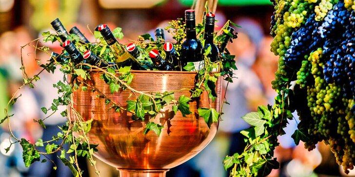 Vinařské slavnosti v rakouském Retzu aneb Akce, kde víno proudí i z kašen
