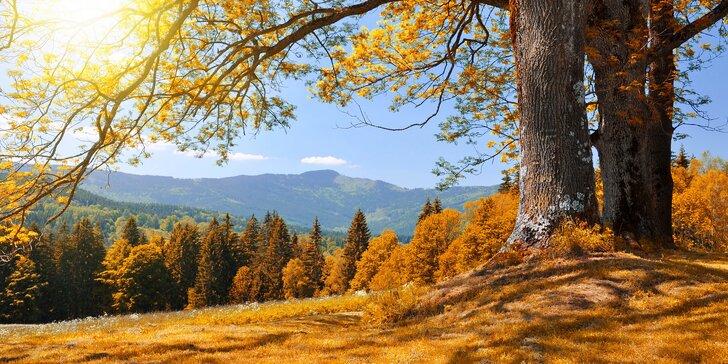Pohodová dovolená na Klatovsku s domácí polopenzí a 50% slevou na wellness