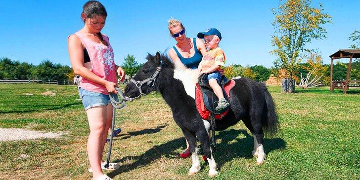 Hurá za zvířátky: rodinný pobyt na Farmě Blaník se snídaní a spoustou zážitků