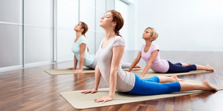 1–5 lekcí jógy pro začátečníky i pokročilé v Eka Yoga Space