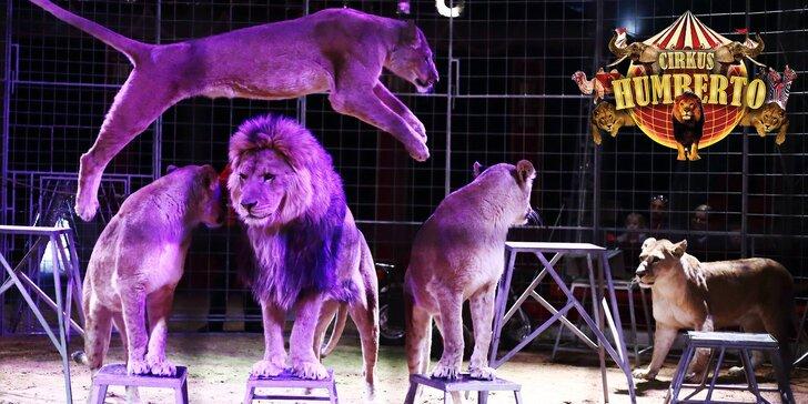 Akrobati i exotická zvířata míří do Prahy: Vstupenky na show Cirkusu Humberto