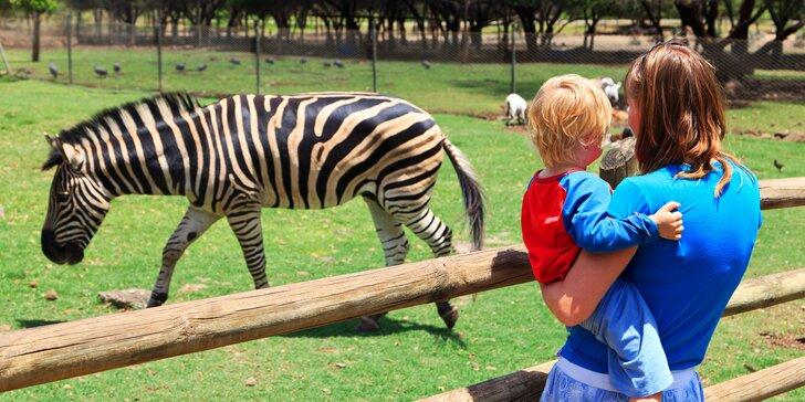 S rodinou do Liberce: hotel v centru, vstupenky do zoo a pobyt dítěte zdarma
