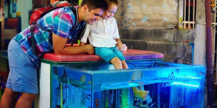 Garra Rufa: 15minutová koupel s rybičkami pro malé i velké