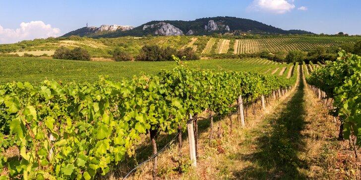 Toulky za klenoty jižní Moravy: pobyt pro 2 s neomezenou konzumací vína