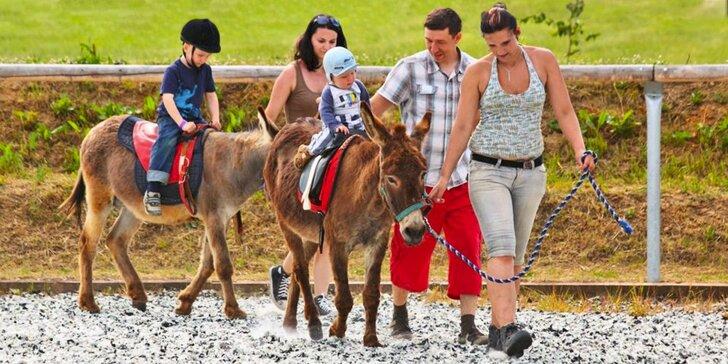 Rodinný pobyt na Farmě Blaník se snídaní, spoustou zážitků a zvířátek
