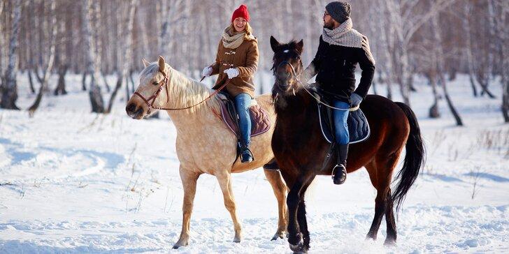 60 minut v koňském sedle: vyjížďka pro zkušené nebo výuka jízdy pro začátečníky