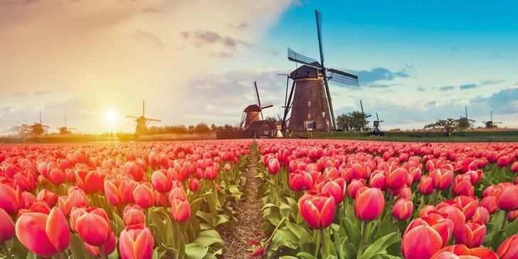 Rozkvetlý Keukenhof, Amsterdam i větrné mlýny: doprava a 2–3 noci v hotelu