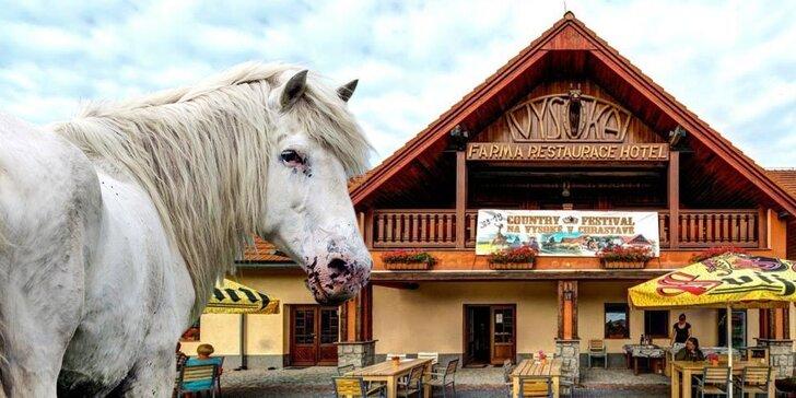 Zimní pohádka na koňské farmě: Pobyt s polopenzí i relaxem v lázních pro 2